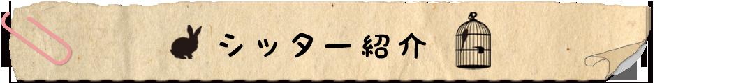シッター紹介