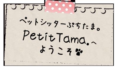 ペットシッターぷちたま。PetitTama.へようこそ
