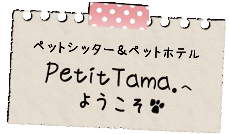 ペットシッター&prっとホテル ぷちたま。PetitTama.へようこそ